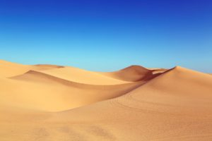 """The desert is often imagined as an exotic """"wasteland"""" of sand dunes and not much more in imperialist discourse."""